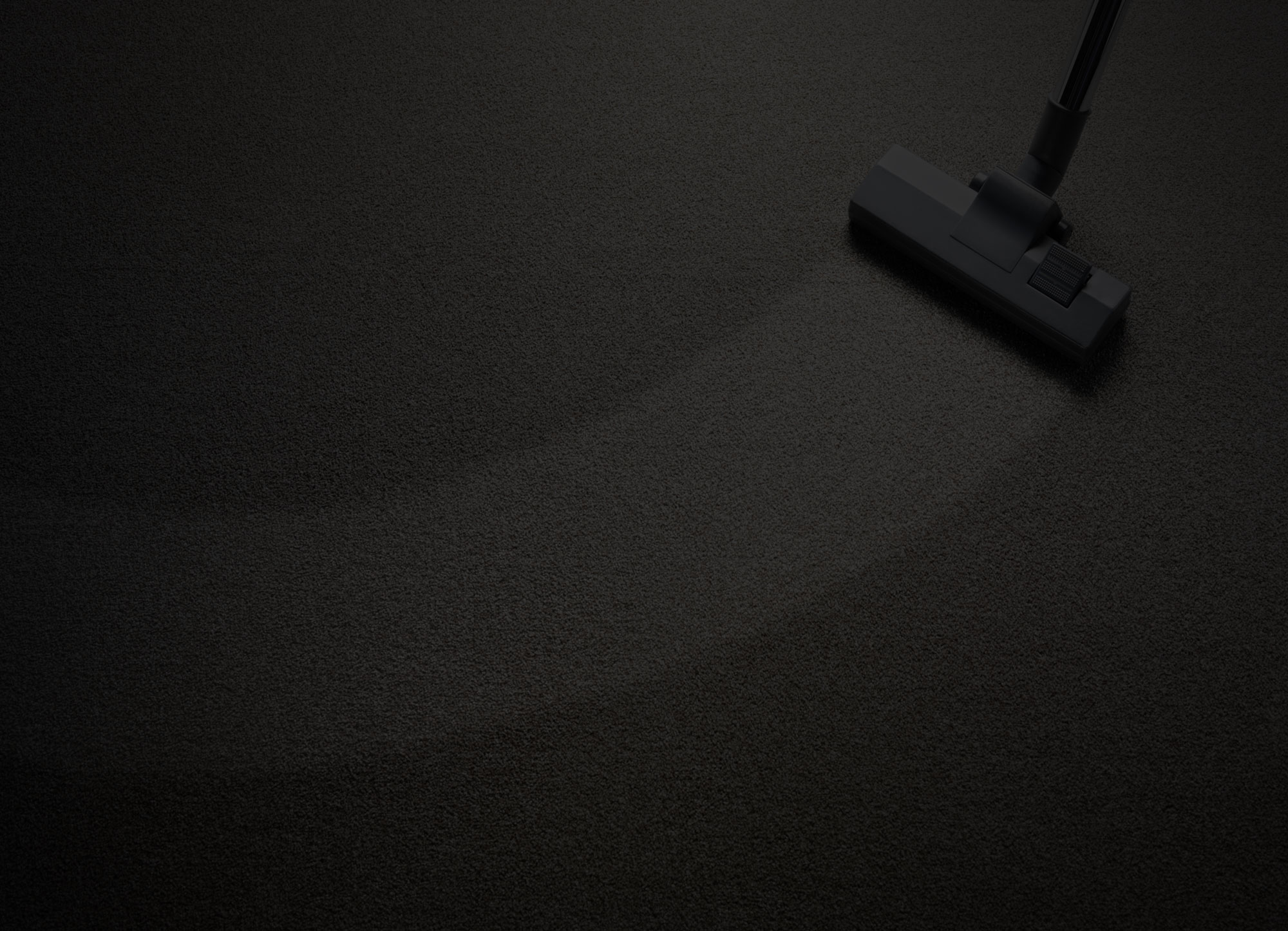 carpet cleaning services in Edison