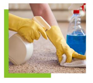 carpet cleaning edison