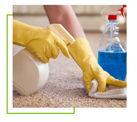 carpet cleaning edison